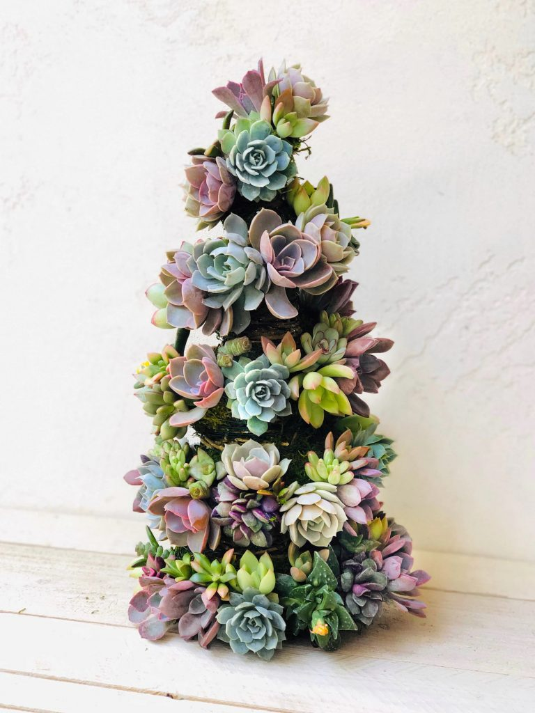 christmas-tree-alternatives-succulent-christmas-tree-the-filtery