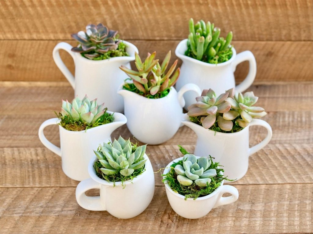 non-toxic-natural-low-budget-affordable-corporate-gift-ideas-for-employes