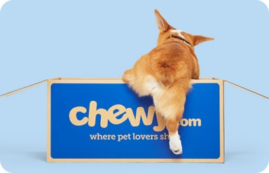 non-toxic-natural-organic-gift-ideas-for-pets-pet-lovers-dog-lovers-cat-lovers