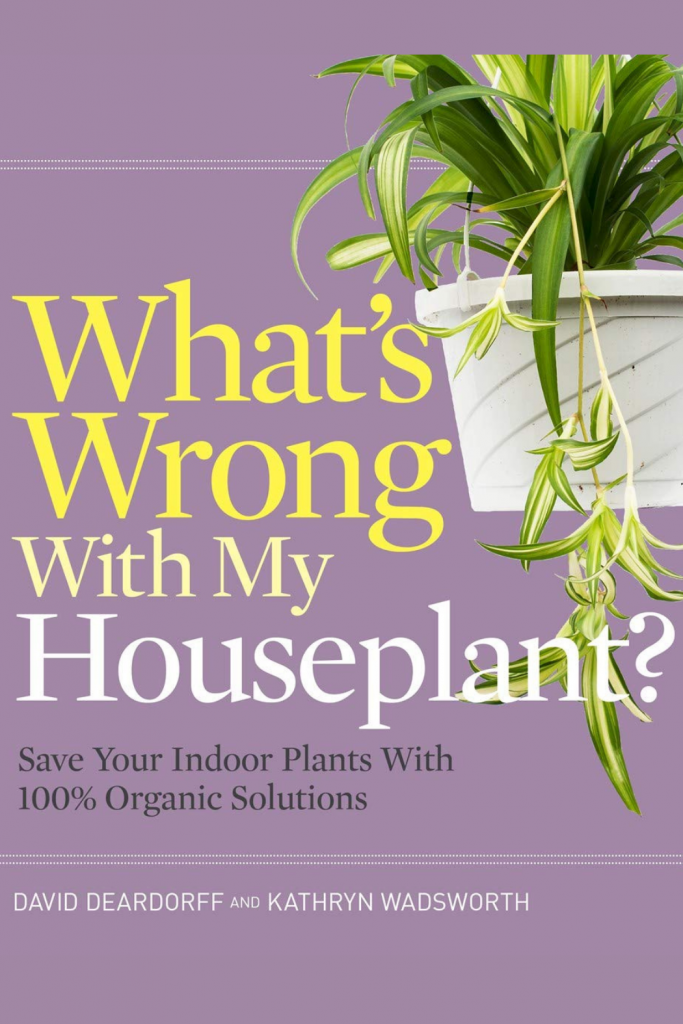 organic-christmas-gift-ideas-for-plant-lovers-